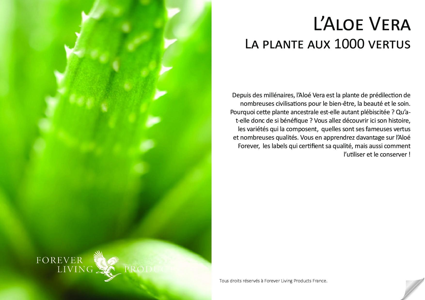 #0_PlanteAux1000Vertus